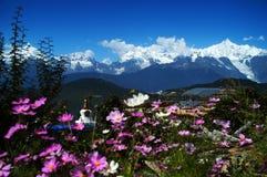 Tibetan pilgrimage Mountain Stock Images