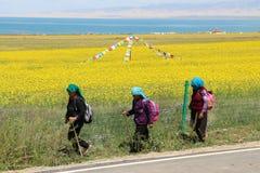 Tibetan pilgrimage at Qinghai Lake in 2015 Royalty Free Stock Photography