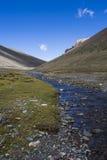 tibetan platå Royaltyfri Fotografi