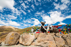 Tibetan Plateau - a great adventure. Yak statue,Prayer flags against the mountains and blue sky on tibetan plateau Royalty Free Stock Photo