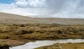 The Tibetan Plateau Stock Photo