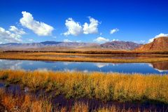 Tibetan Plateau landscape in fall Stock Photography