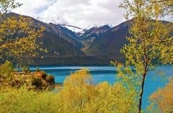 Tibetan plateau scene-Basum Lake Royalty Free Stock Photos