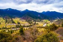 Tibetan plateau scene-Lu Lang Zhen(Lulang town) Royalty Free Stock Photos