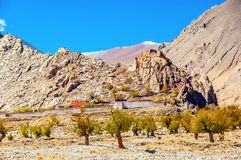 Tibetan plateau scene-Old lama temple Royalty Free Stock Images