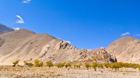 Tibetan plateau scene-Old lama temple Royalty Free Stock Image