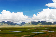 Tibetan plateau wetland Royalty Free Stock Photo