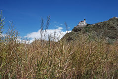 Tibetan platteland Stock Fotografie