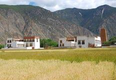 Tibetan platteland Royalty-vrije Stock Fotografie