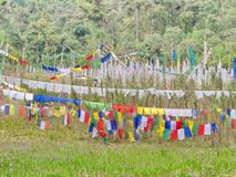 Tibetan Prayer Flag for Faith, peace, wisdom, compassion, and st. Rength, Sikkim State in India, 15th April, 2013 Stock Image