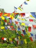 Tibetan Prayer Flags. Fluttering on a Nepalese hillside Royalty Free Stock Photography