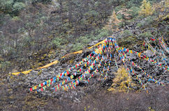 Tibetan prayer flags on a mountain slope at Huanglong, China Stock Photo