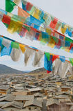 Tibetan prayer flags over shangri-la, china Stock Image