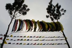Tibetan prayer flags between two trees Stock Images