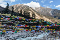 Tibetan prayer flags waving and swaddled with trees an mountain in sideway over frozen river with mountain in background at Thangu Stock Images