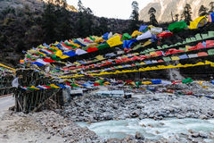 Tibetan prayer flags waving and swaddled with trees an mountain in sideway over frozen river with mountain in background at Thangu Stock Image