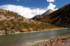 Tibetan river Royalty Free Stock Photos