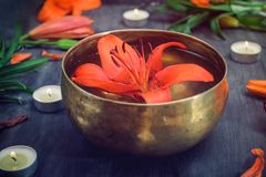 Tibetan singing bowl with floating lily inside. Burning candles, lily flowers and petals on the black wooden background. Meditatio. N and Relax. Exotic massage royalty free stock photography