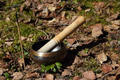Tibetan singing bowl. incense. Tibetan singing bowl, incense in a forest glade Stock Photography