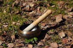 Tibetan singing bowl. incense Stock Photography