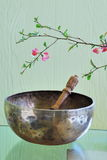 Tibetan singing bowl with mallet Stock Images