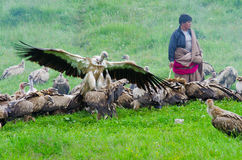 Tibetan sky burial Royalty Free Stock Photos