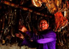 Tibetan smiling for harvest in calfs husbandry Stock Photos
