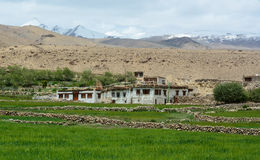 Tibetan stone houses on the hill in Ladakh, India Royalty Free Stock Photos