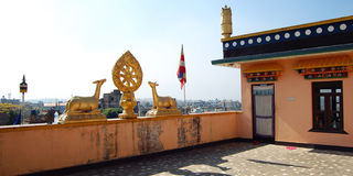 Tibetan Temple Buddhist symbols: Dharma-wheel and deer. Stock Image