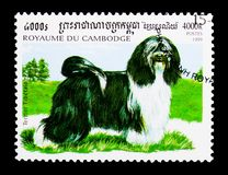 Tibetan Terrier (Canis lupus familiaris), Dogs serie, circa 1999. MOSCOW, RUSSIA - MARCH 18, 2018: A stamp printed in Cambodia shows Tibetan Terrier (Canis lupus royalty free stock image