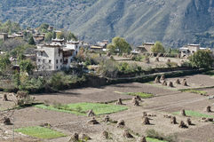 Tibetan village scene. A tibetan village surrounded by broad fields Royalty Free Stock Photography