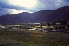 Tibetan village in summer Stock Photo