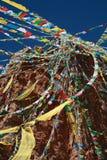 Tibetan Vlaggen van het Gebed Stock Afbeelding