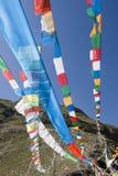 Tibetan Vlaggen van het Gebed in Lhasa Stock Foto