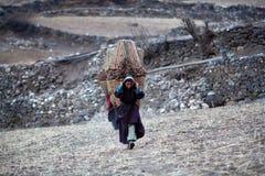 Tibetan womans royalty free stock image