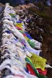 Tibetana flaggor med mantra arkivbilder