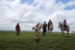 Tibetana herders Arkivfoto