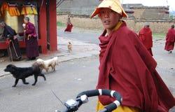 Tibetana monks Royaltyfri Fotografi