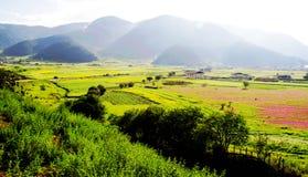 Tibetaner, Dorf, Hirten, Landschaft Stockfotografie