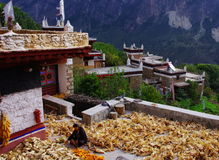 Tibetanische Frau Lizenzfreies Stockfoto
