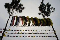 Tibetanische Gebetsflaggen zwischen zwei Bäumen Stockbilder