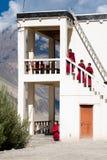 Tibetanische Jungen, buddhistische Mönche des Anfängers. Indien Stockfotografie