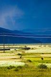 Tibetanische Landschaft stockfotos