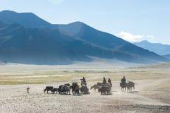 Tibetanische Nomaden, die mit hourses und Yak reisen Ladakh-Hochland lizenzfreie stockfotos