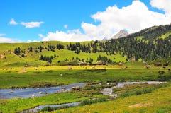 Tibetanische Ranch stockfoto