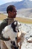 Tibetanischer Nomade, Ladakh lizenzfreie stockfotografie
