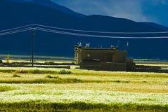 Tibetanisches Gebäude stockfotografie