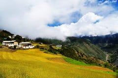 Tibetanisches Häuschen auf dem Gerstengebiet Stockbild
