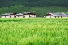 Tibetanisches Wohngebäude Lizenzfreies Stockfoto