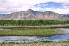Tibetant landskap Royaltyfri Foto